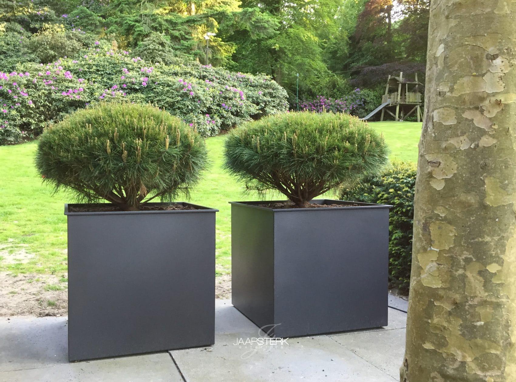 Plantenbakken van puur staal