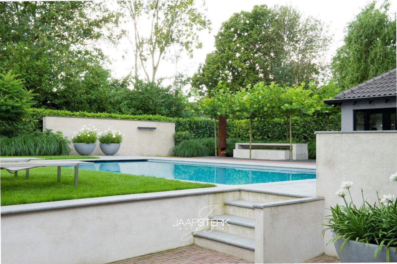Moderne tuin met zwembad for Tuin met zwembad