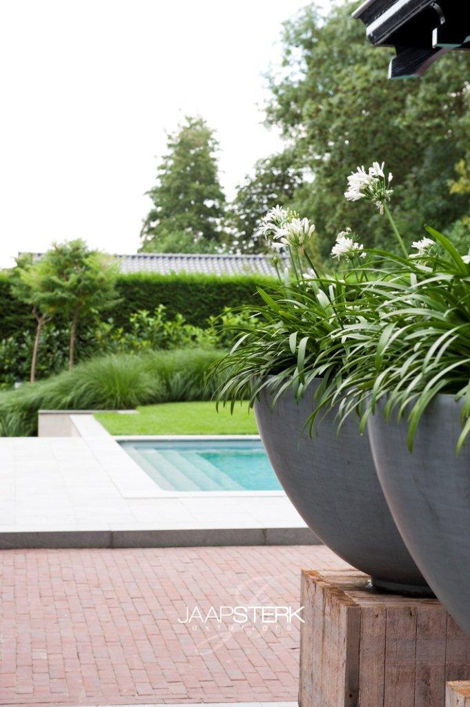 Moderne tuin met zwembad for Vacature tuin