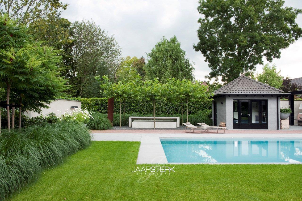 Moderne tuin met zwembad 9 for Tuin met zwembad