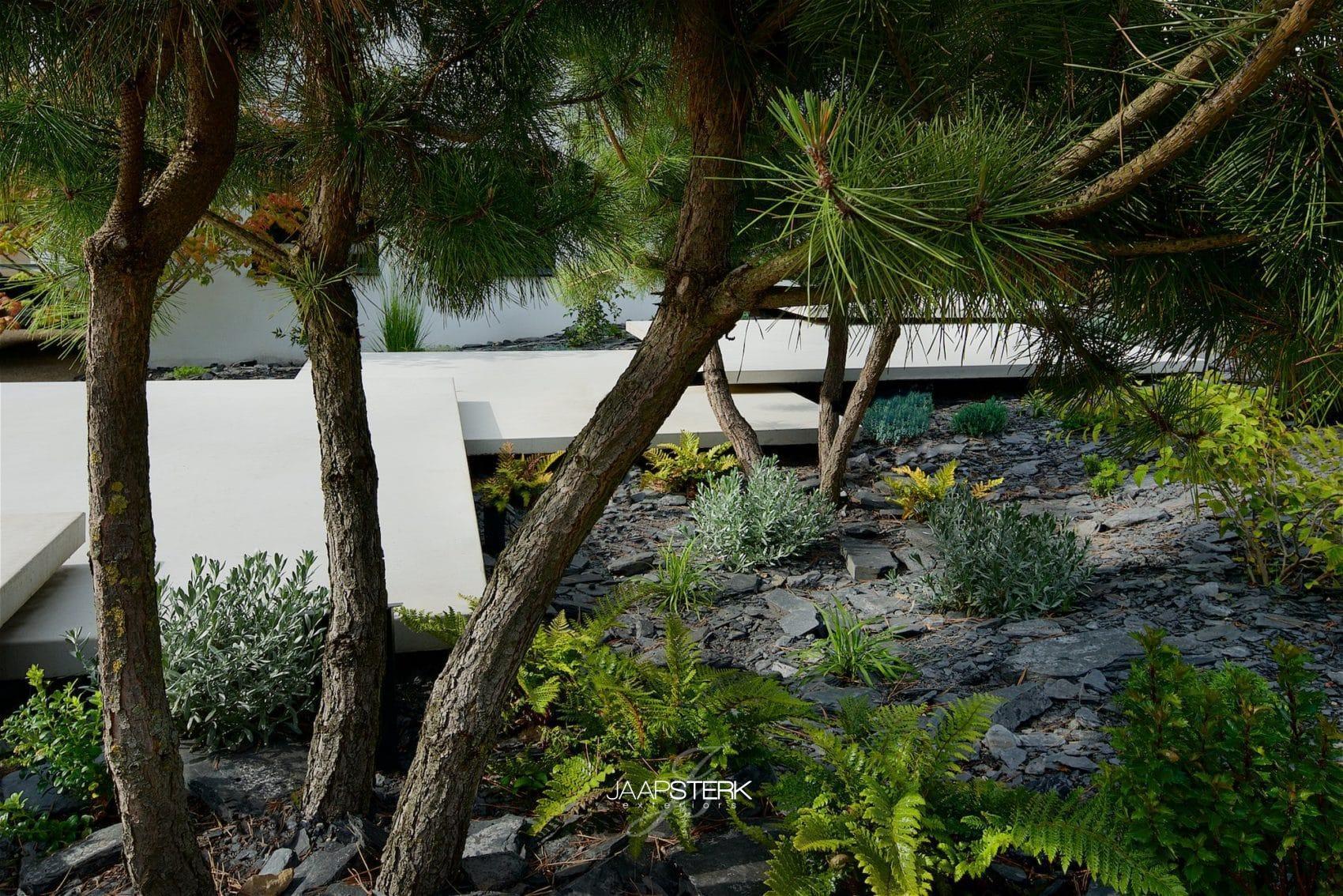 Moderne en strakke tuinarchitectuur leisteen